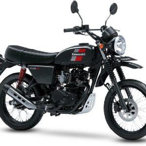 Kawasaki W175TR Standard